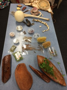Some bush tucker, coolamons and other items Cassie had on display.