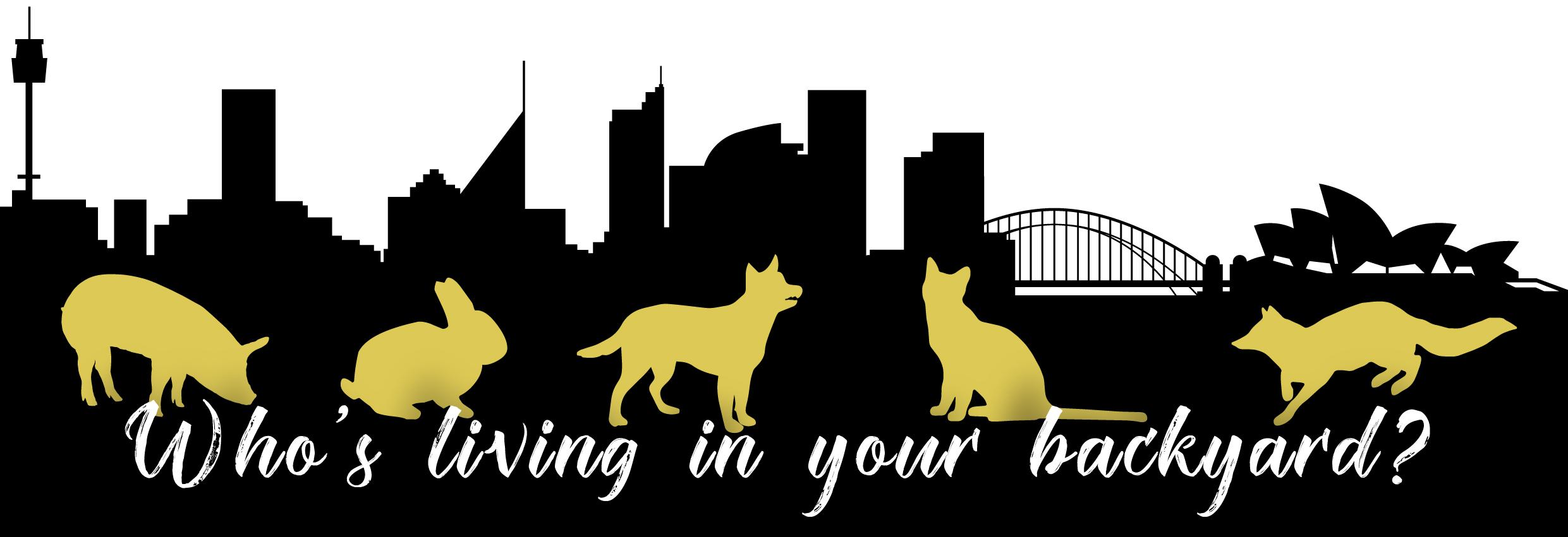 City Livin' Ferals Banner