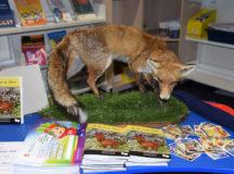 Moriah College Book Launch - Fox Display