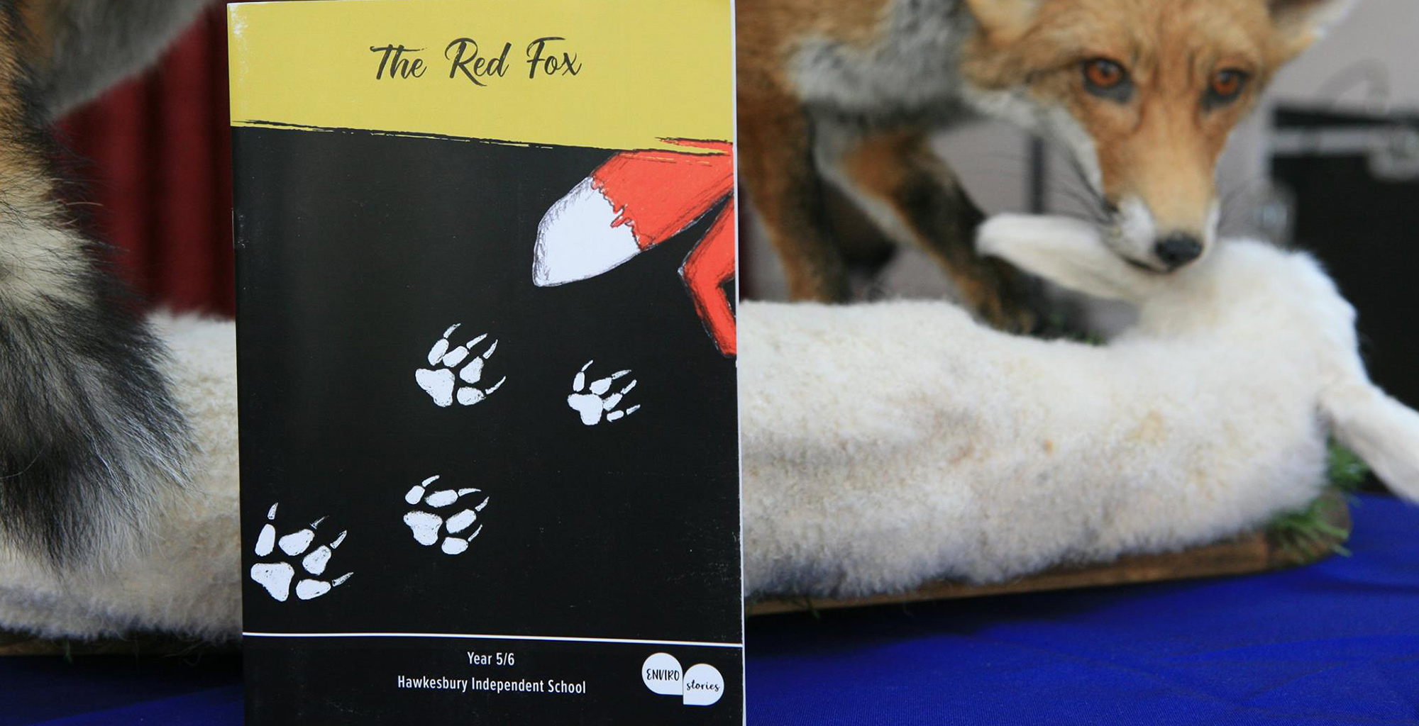 The Red Fox Book