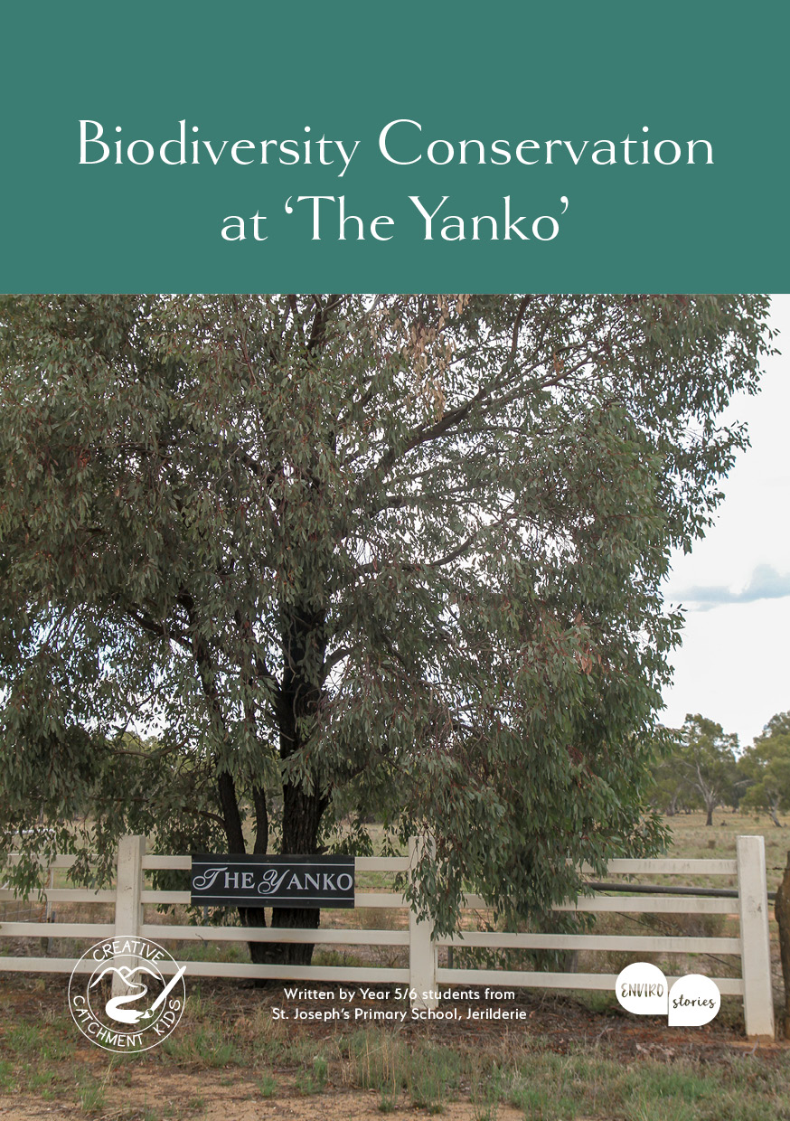 Biodiversity Conservation at 'The Yanko'