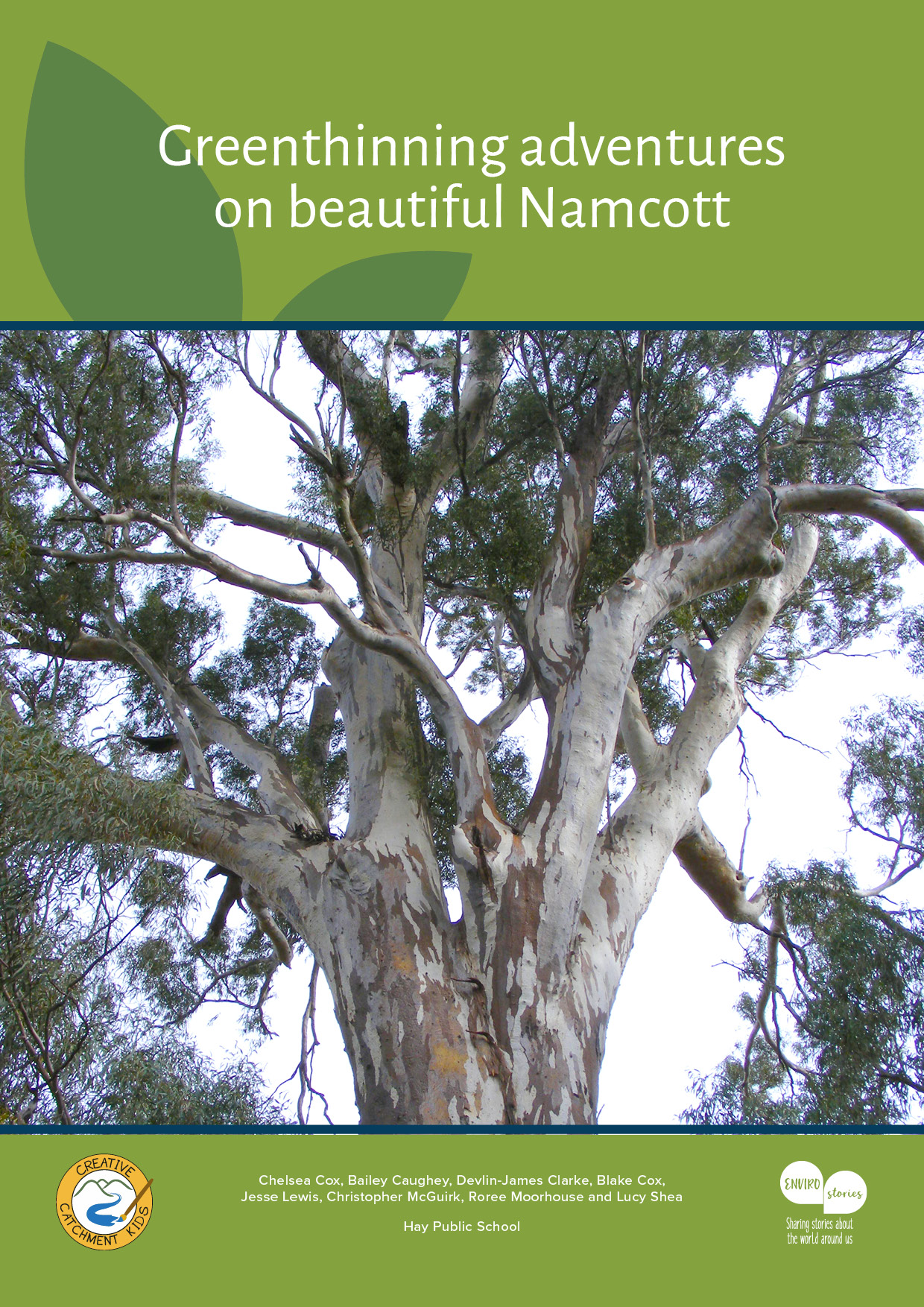 Greenthinning adventures on beautiful Namcott