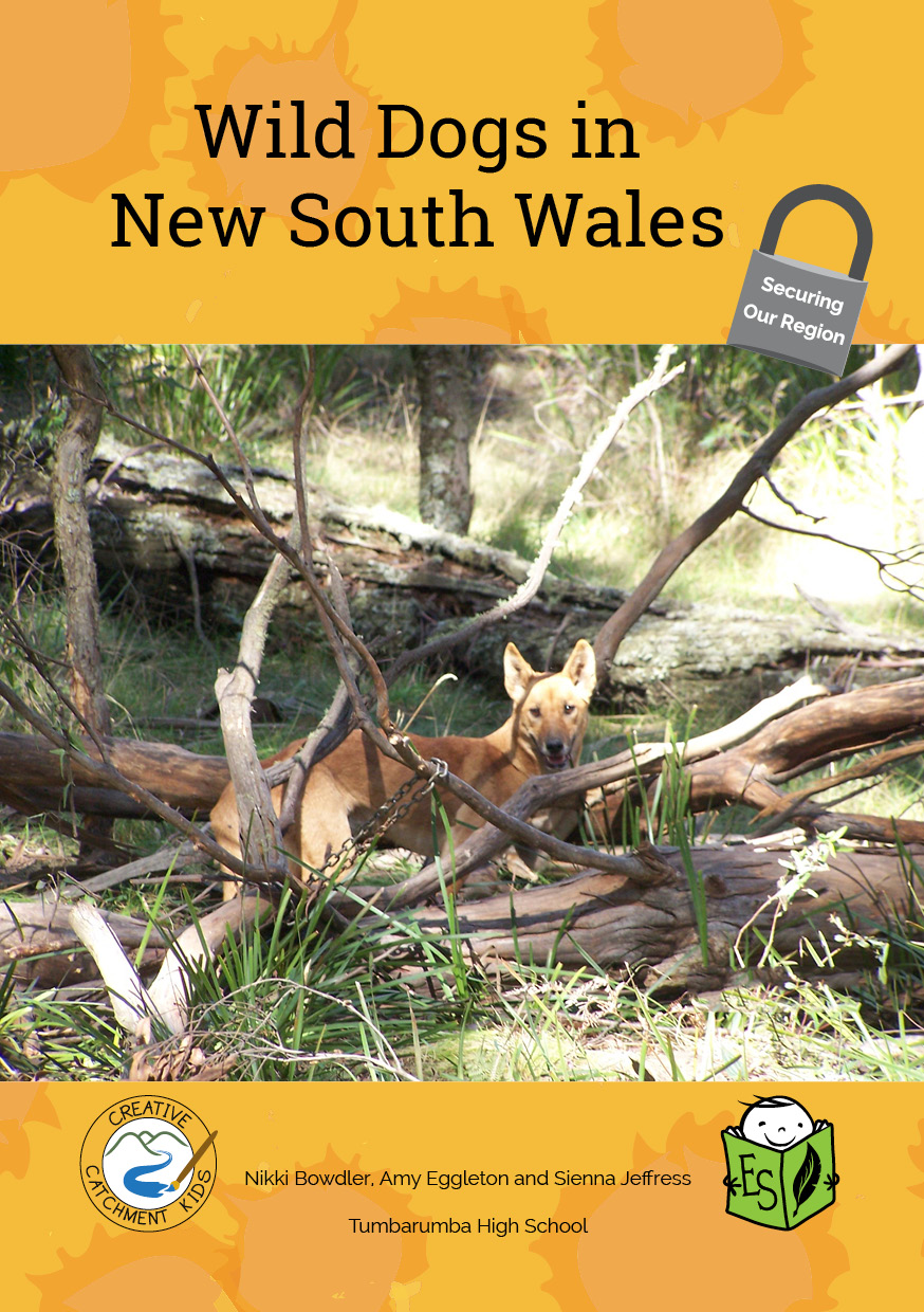 Wild Dogs in New South Wales