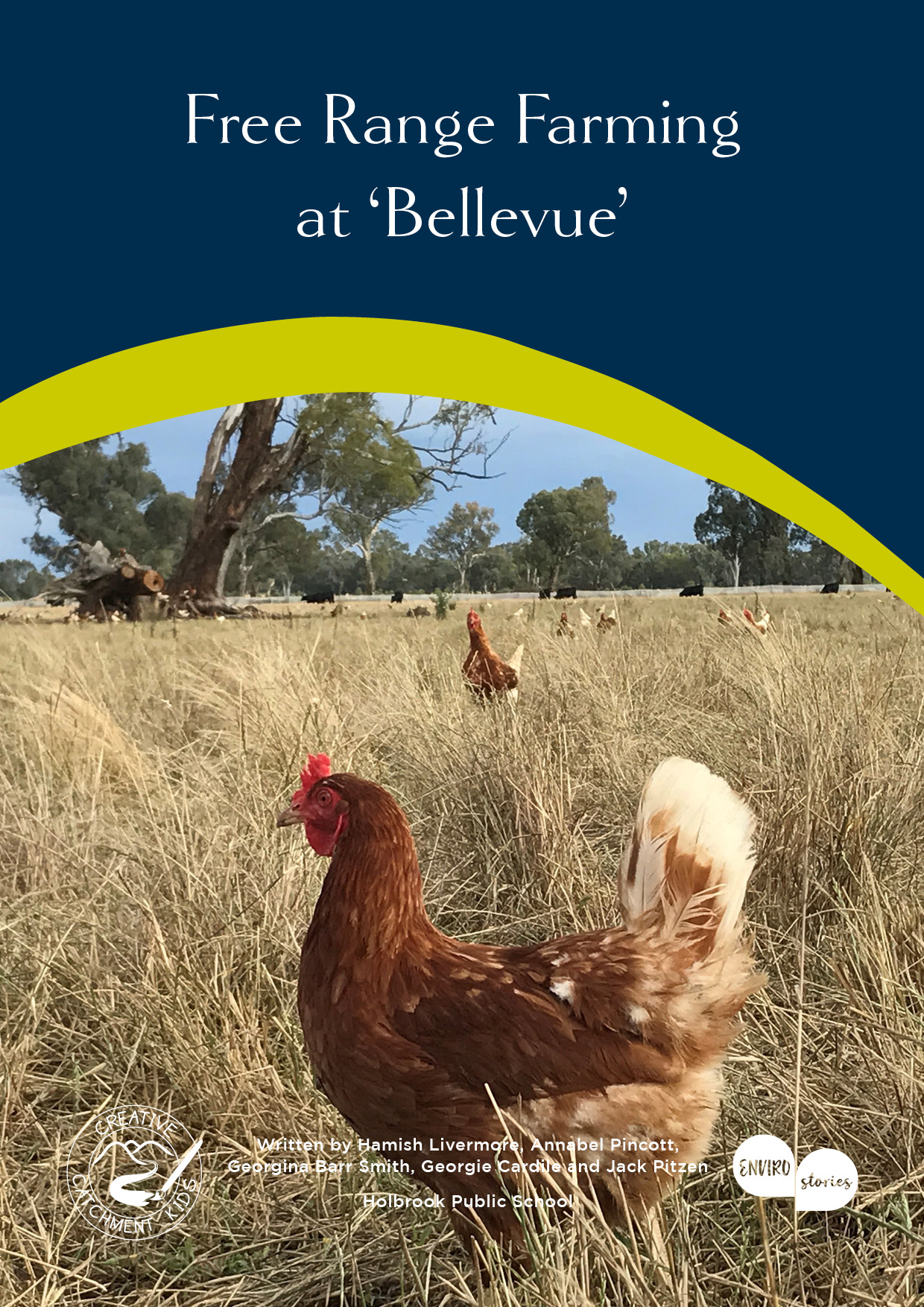 Free Range Farming at 'Bellevue'