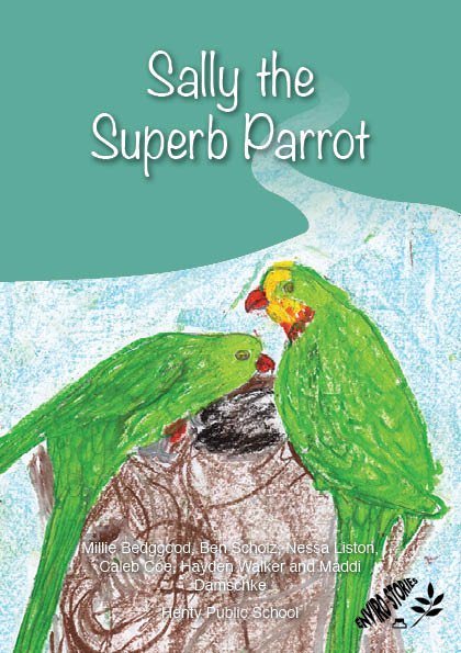 Sally the Superb Parrot