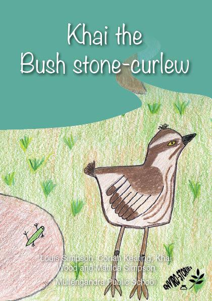 Khai the Bush Stone-curlew