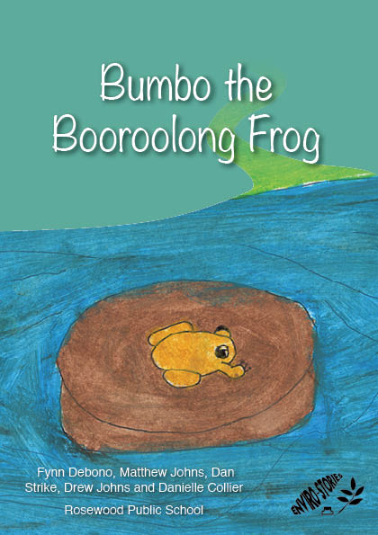 Bumbo the Booroolong Frog