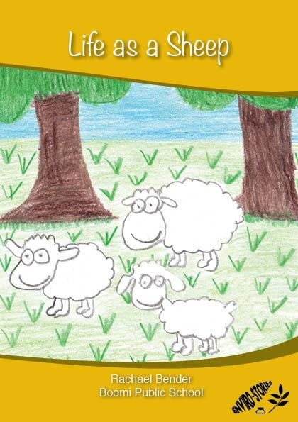 Life as a Sheep