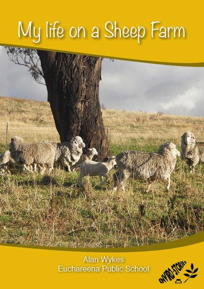 My Life on a Sheep Farm