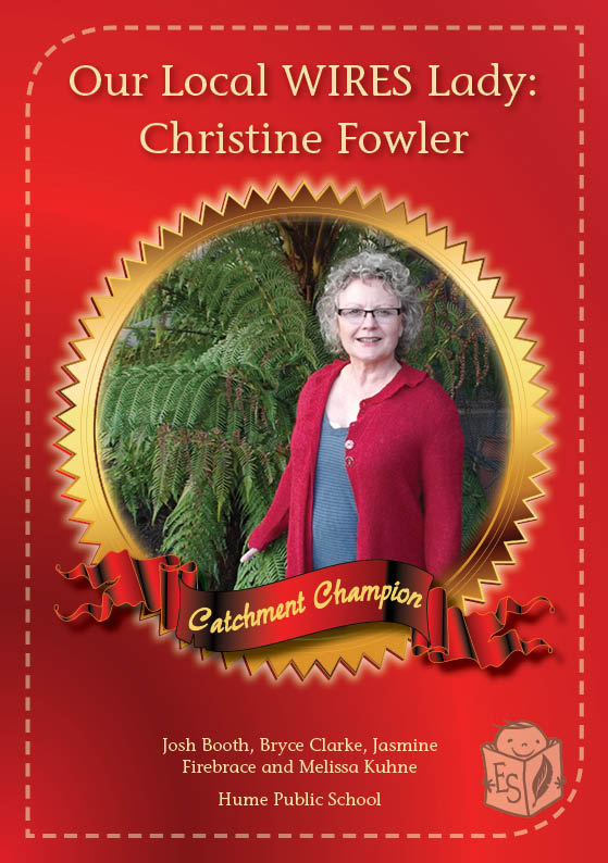 Our local WIRES Lady: Christine Fowler