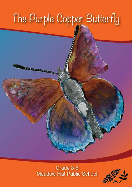 The Purple Copper Butterfly